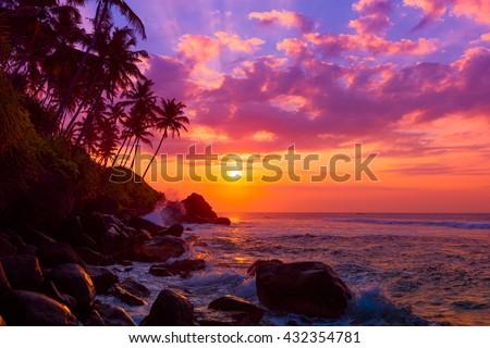 Palm tress on tropical coast at sunset - stock photo