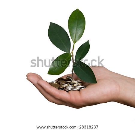 Palm with a plant growing from pile of coins - stock photo