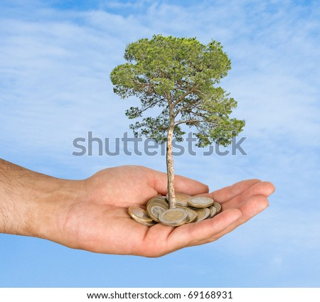 Palm with a tree growing from pile of coins - stock photo