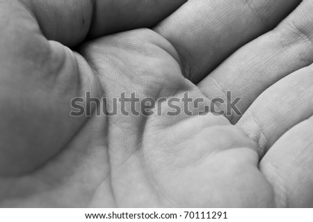 Palm with lines close up in black and white color - stock photo