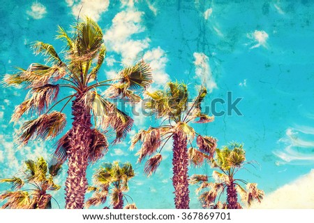 Palms against blue sky. Toned vintage image - stock photo