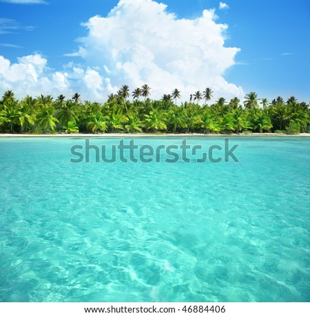 palms and caribbean sea - stock photo
