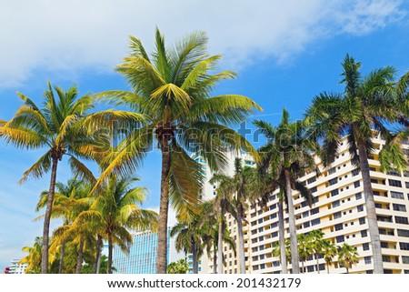 Palms and modern buildings of Miami Beach. Vacation destination - Miami Beach, Florida, USA - stock photo
