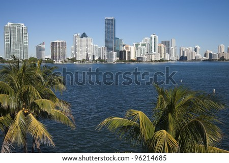 Palms and skyline of Miami, Florida, USA - stock photo
