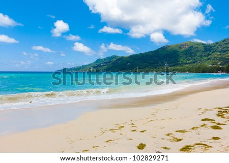 Palms Dream Bay - stock photo