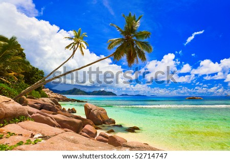 Palms on beach at island La Digue, Seychelles - vacation background - stock photo