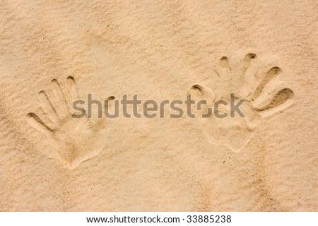 palms on sand - stock photo