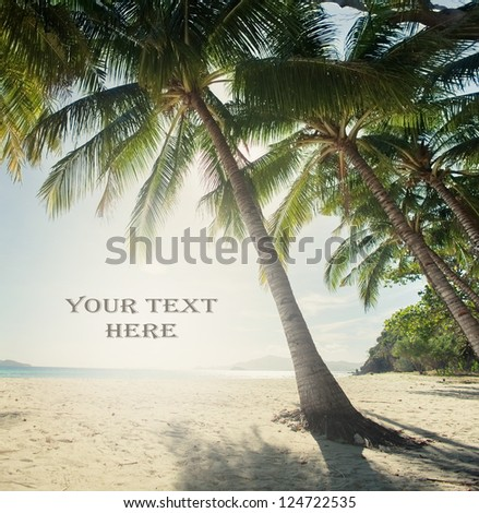 Palms on the beach with text - stock photo