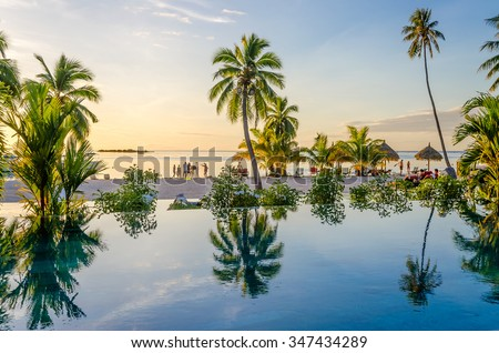 Palms reflecting on an infinity pool on the beach in Moorea, French Polynesia - stock photo