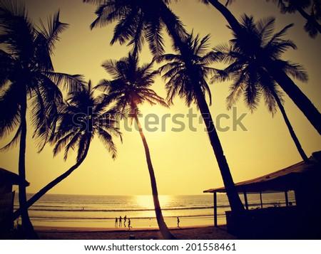 Palms silhouettes against sun, vintage retro style, Goa, India. - stock photo