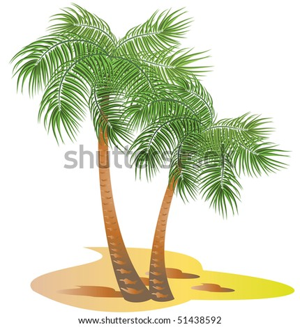 Palms trees. Raster version of vector.