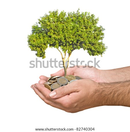 Palms with a sapling growing from pile of coins - stock photo