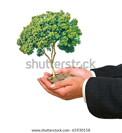 Palms with a tree growing from pile of coins - stock photo
