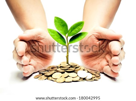 Palms with a tree growing from pile of coins / hands holding a tree growing on coins / csr green business / business ethics / good governance - stock photo