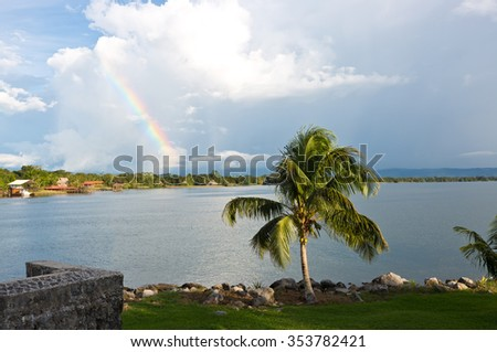 Palmtree and rainbow in the caribean