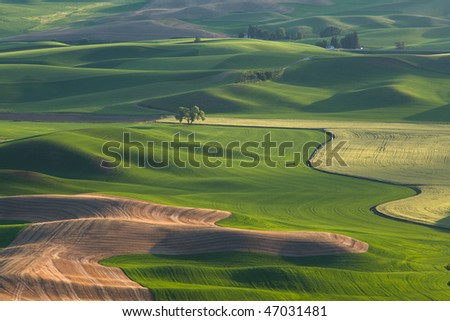 Palouse Hills at sunset - stock photo