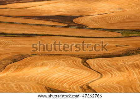 Palouse Hills crop fields at harvest time, Washington state - stock photo