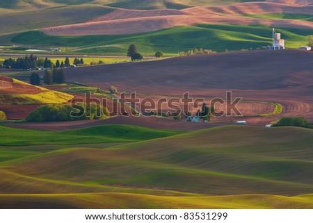 Palouse - The American Tuscany - stock photo