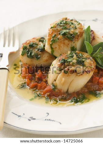 Pan Fried Scallops Piperade and Garlic Butter - stock photo