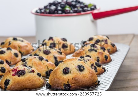 Pan of fresh picked berries and fresh warm berry muffins - stock photo