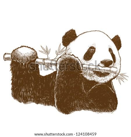 Panda - stock photo