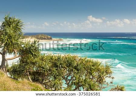 Pandanus palms and rocky headlands along the Queensland coastline - stock photo