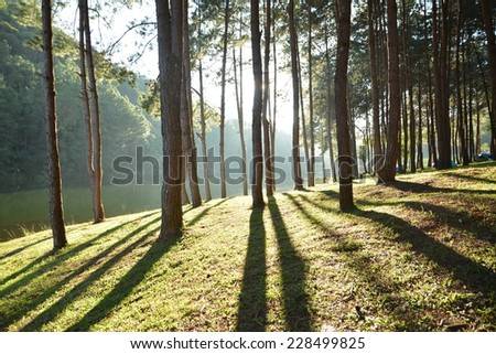 Pang Oung nature in thailand - stock photo