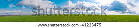 Panorama a green field against the dark blue sky - stock photo