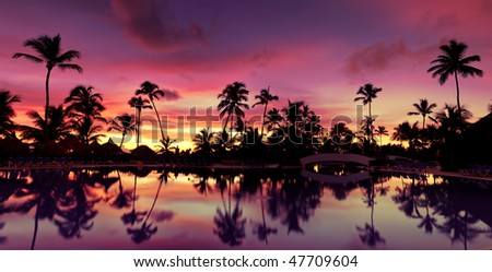 Panorama Blue pink and red sunset over sea beach with palms Dominican republic