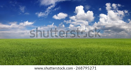 Panorama. Calm cloudy sky over green field - stock photo