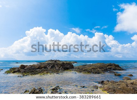 Panorama Dream Palms  - stock photo