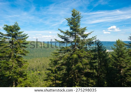 Panorama from Zweiseenblick, Forbach, Black Forest, Baden-Wuerttemberg, Germany, Europe - stock photo