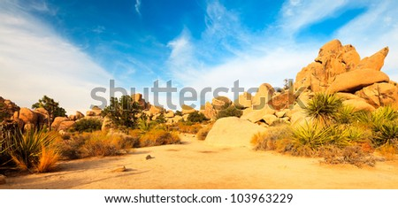 Panorama landscape of Hidden Valley in Joshua Tree National Park, USA. Sunset. Big Rocks Yucca Brevifolia Mojave Desert Blue cloudy sky. - stock photo
