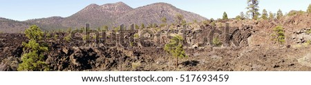 Panorama, Lava flow with Ponderosa pines, Sunset Crater National Monument, Arizona