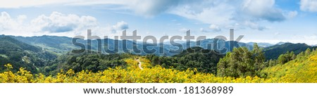 Panorama mountain flowers mountains and sky lined with blue sky. - stock photo