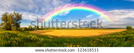 Panorama of a big summer field shined with the sun, with clouds and rainbow in the sky on background - stock photo