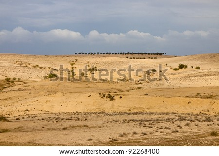 Panorama of a stone desert under blue sky