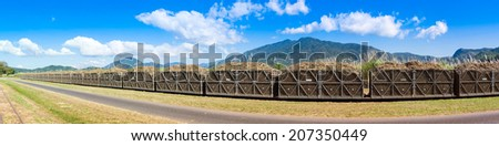 Panorama of a sugar cane train fully loaded with harvest. - stock photo
