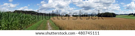 Panorama of corn and soy fields in Germany
