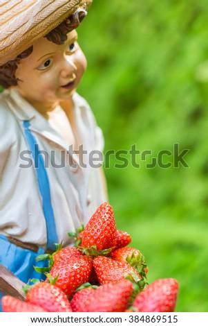 Panorama of Fresh ripe perfect strawberry. Food Frame Background - stock photo