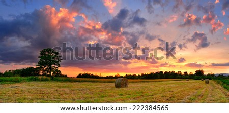 Panorama of hay bale field in colorful sunset  - stock photo