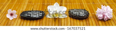 panorama of  japanese zen garden with stones and blooms in row - stock photo