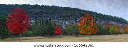 Panorama of Lost Maples State Natural Area - stock photo