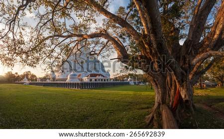 Panorama of Mahatupa or Ruwanweliseya big Dagoba in Anuradhapura, Unesco, Sri Lanka, Asia - stock photo