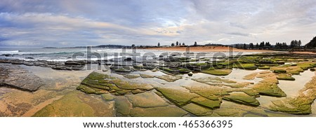 Panorama of northern beaches of Sydney - Collaroy beach at sunrise. Low tide opened seabed with sea plants near Narrabeen lake lagoon and beach sand in background.