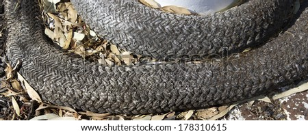 Panorama of old weathered  grey strong plaited nautical ship's rope used to anchor  ships to port bollard on a wharf   . - stock photo