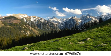 Panorama of snowy peaks from the meadow with green grass. Spring in High Tatra Mountains.