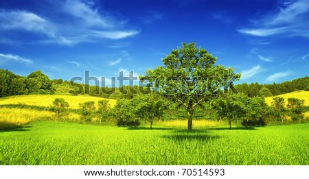 Panorama of spring mountain - stock photo