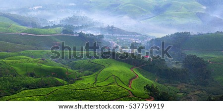 Panorama of tea plantations in Kerala, South India. It is situated at around 1,600 metres above sea level in the Western Ghats range of mountains.