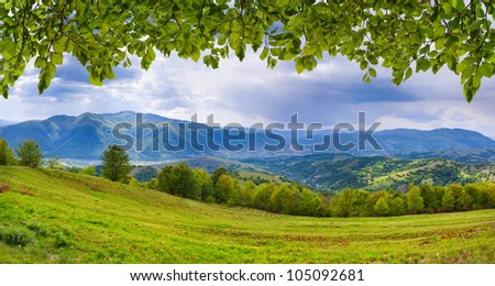 Panorama of the mountains with fresh green leaves